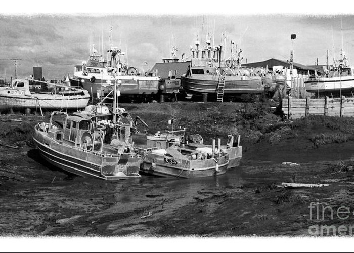 Alaska Greeting Card featuring the photograph The Real Alaska - Caught At Low Tide by Pete Hellmann