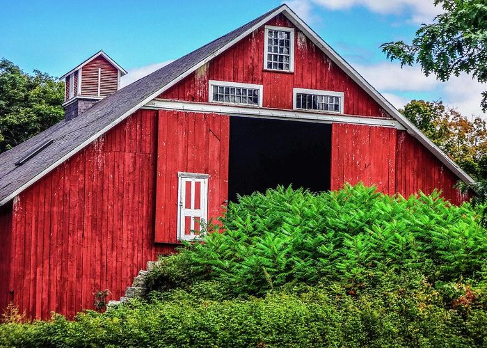 Barn Greeting Card featuring the photograph The Red Barn by Gayne Dorio