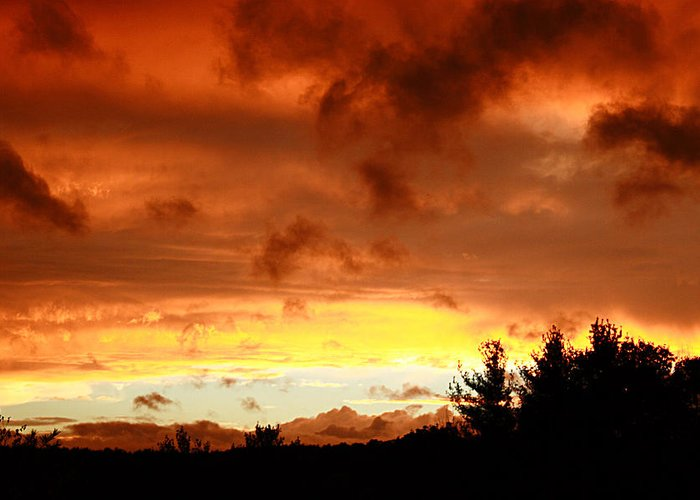 Sunset Greeting Card featuring the photograph The Red Planet by Carol J Hicks