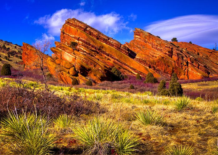 Red Rocks Greeting Card featuring the photograph The Red Rock Park Vi by David Patterson