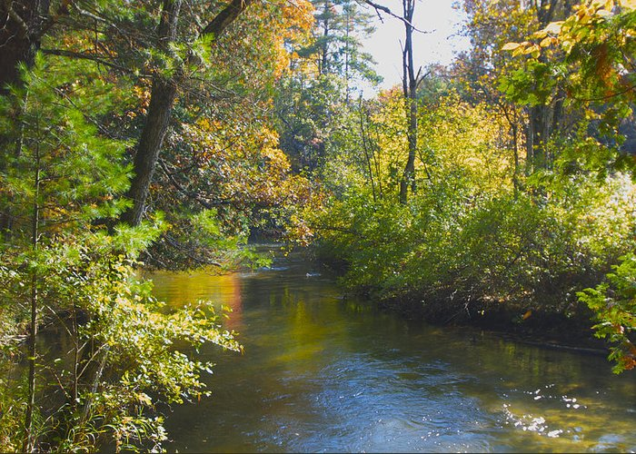 Rivers Greeting Card featuring the photograph The River by Sheryl Thomas