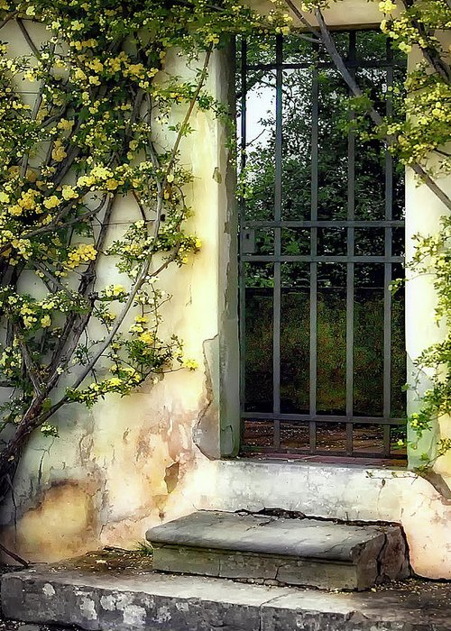 Italy Greeting Card featuring the photograph The Rose Vined Door by Lynn Andrews