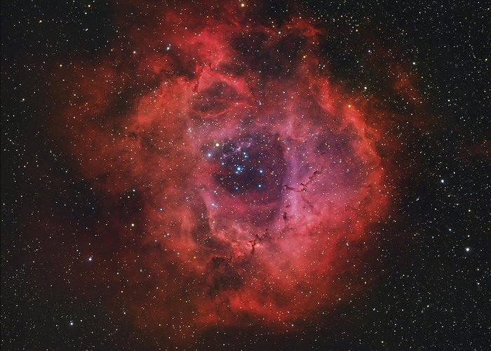 Ngc 2237 Greeting Card featuring the photograph The Rosette Nebula by Rolf Geissinger