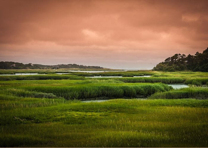 Duck Creek Marsh Greeting Card featuring the photograph The Salt Marsh by Heather Hubbard