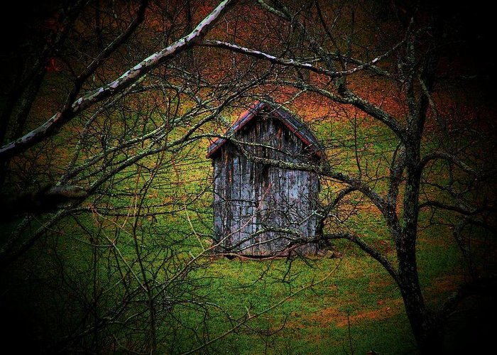 Woods Greeting Card featuring the photograph The Shed by Michael L Kimble
