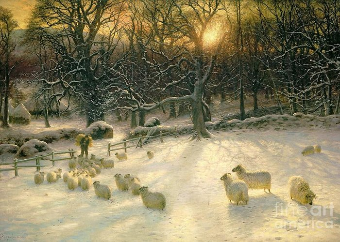 Grazing Snow Greeting Cards