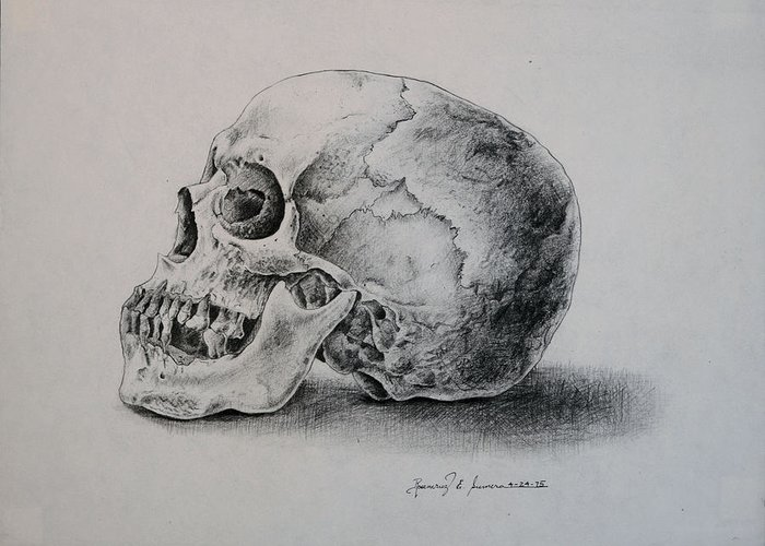 Pencil On Paper Greeting Card featuring the drawing The Skull by Rosencruz Sumera