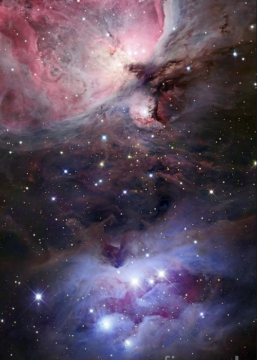 Astronomy Greeting Card featuring the photograph The Sword Of Orion by Robert Gendler
