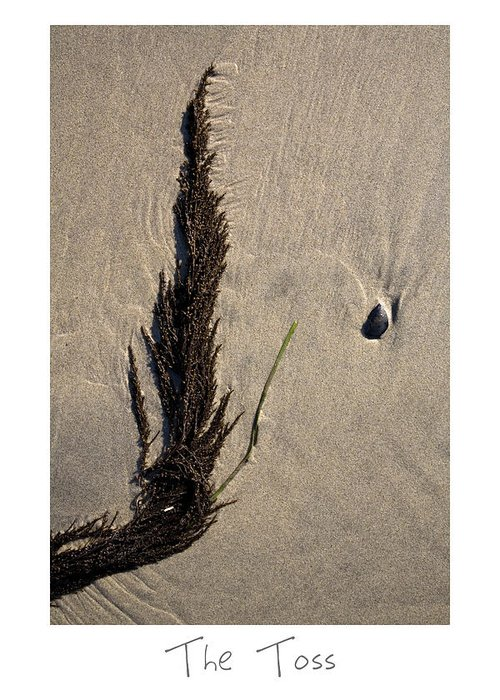 Beach Art Greeting Card featuring the photograph The Toss by Peter Tellone