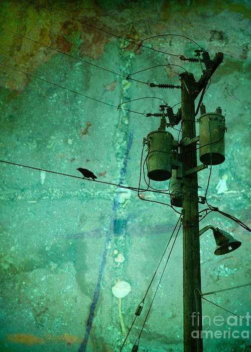 Urban Greeting Card featuring the photograph The Urban Crow by Tara Turner