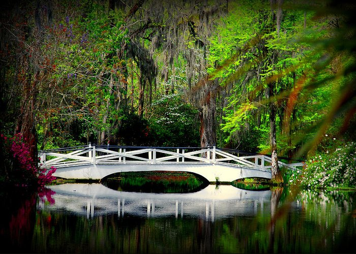 White Bridge Greeting Card featuring the photograph The White Bridge In Magnolia Gardens Sc by Susanne Van Hulst