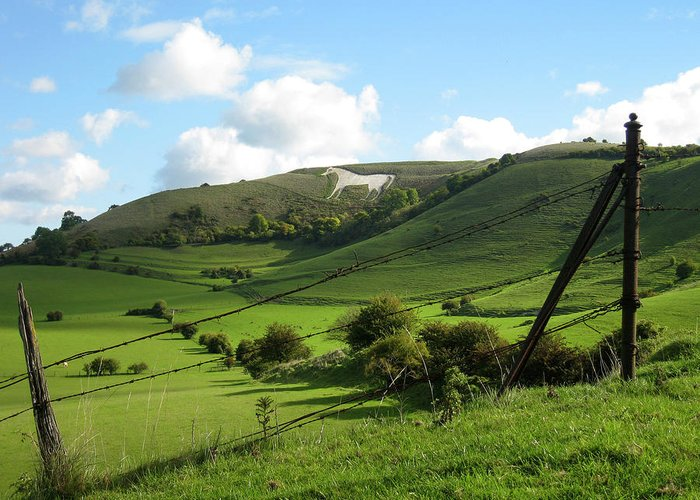 Westbury Greeting Card featuring the photograph The White Horse Westbury England by Kurt Van Wagner