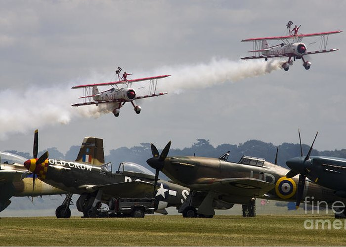 Spitfire Greeting Card featuring the photograph The Youngsters And Oldies by Angel Tarantella