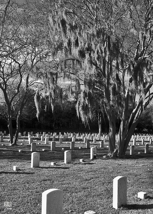 Cemetary Greeting Card featuring the photograph This Is War by Michele Caporaso
