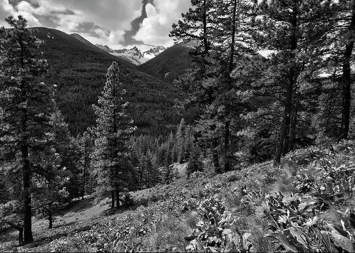 Klipchuck: Okanogan National Forest Greeting Card featuring the photograph This Is Washington State No.1b - Klipchuck by Paul W Sharpe Aka Wizard of Wonders
