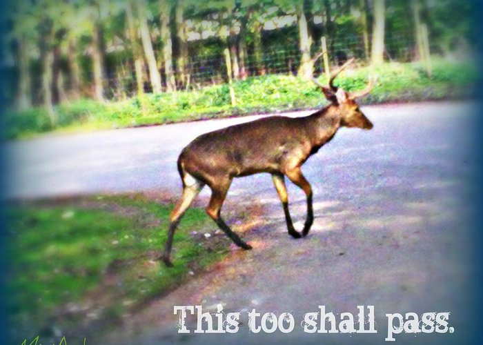 This Too Shall Pass Greeting Card featuring the photograph This Too Shall Pass by Miriam Shaw