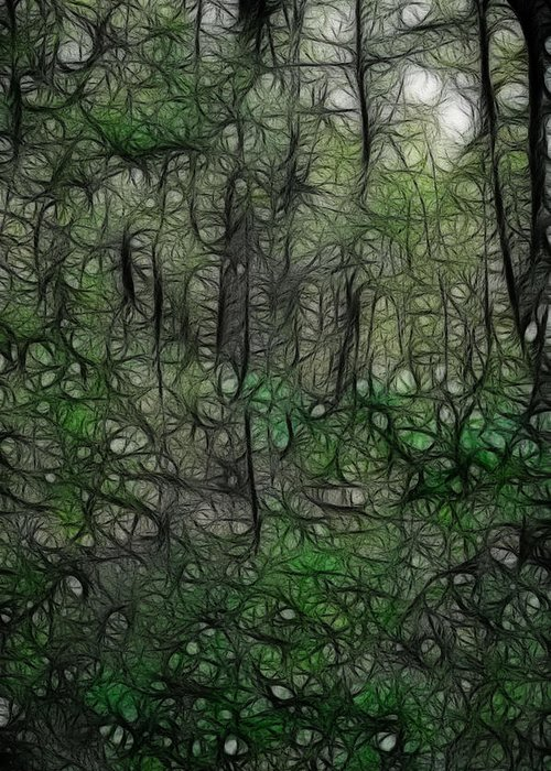 Thoreau Greeting Card featuring the photograph Thoreau Woods Fractal by Lawrence Christopher