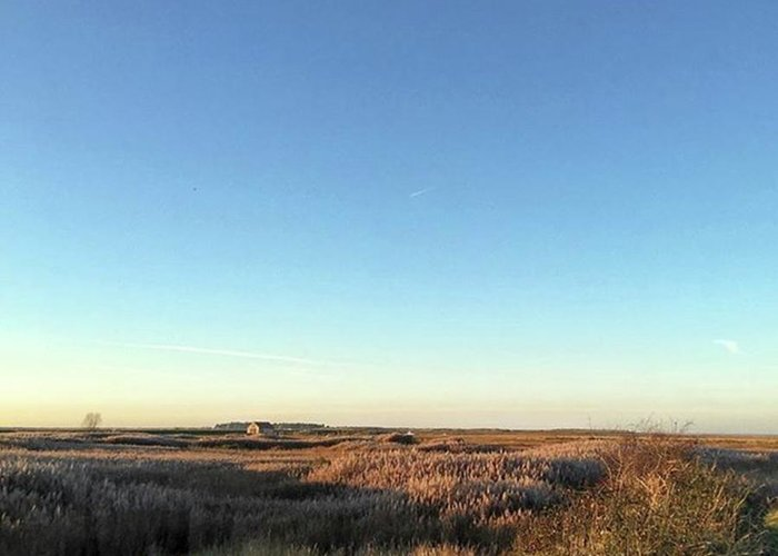 Natureonly Greeting Card featuring the photograph Thornham Marsh Lit By The Setting Sun by John Edwards