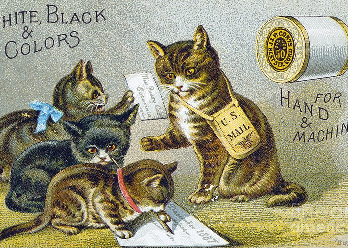 1880s Greeting Card featuring the photograph Thread Trade Card, 1880 by Granger
