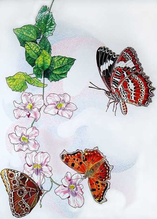Butterflies Greeting Card featuring the painting Three Is A Charm by Vlasta Smola