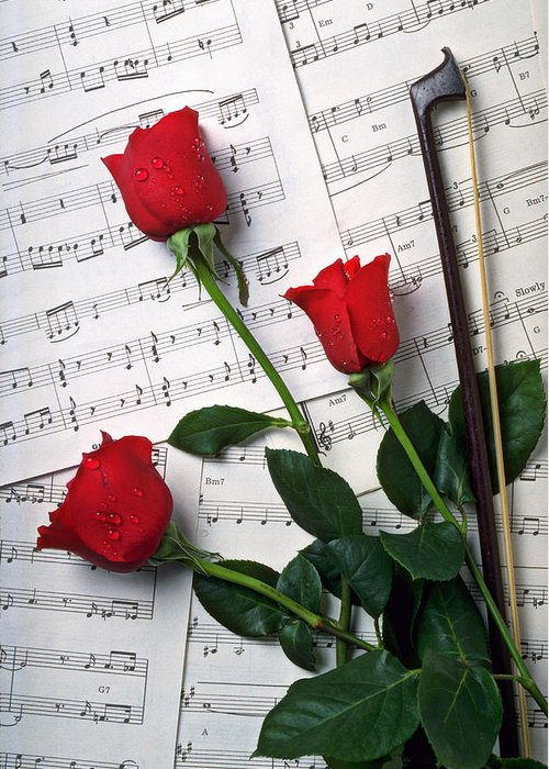 Red Roses Greeting Card featuring the photograph Three Red Roses by Garry Gay