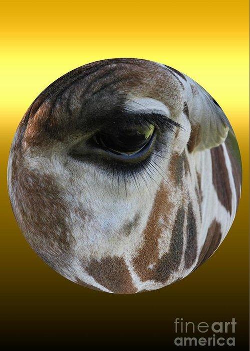 Giraffe Greeting Card featuring the photograph Through My Eyes by Rick Rauzi