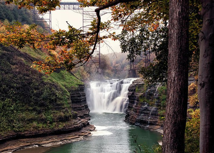 Letchworth State Park Greeting Card featuring the photograph Through The Trees by Peter Chilelli
