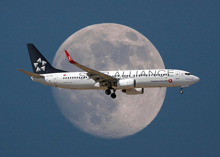 Star Alliance Airlines Photographs Greeting Cards