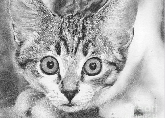 Cat Greeting Card featuring the drawing Tiddles by Karen Townsend