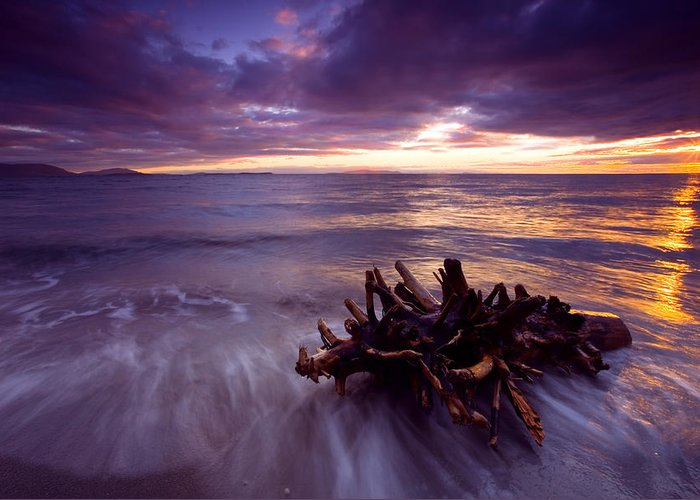 Sunset Greeting Card featuring the photograph Tide Driven by Mike Dawson