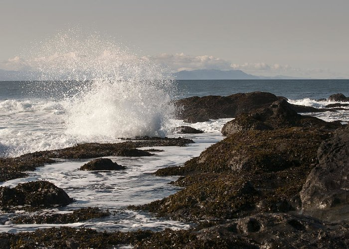 Waves Greeting Card featuring the photograph Tide Pool Wave by Chad Davis