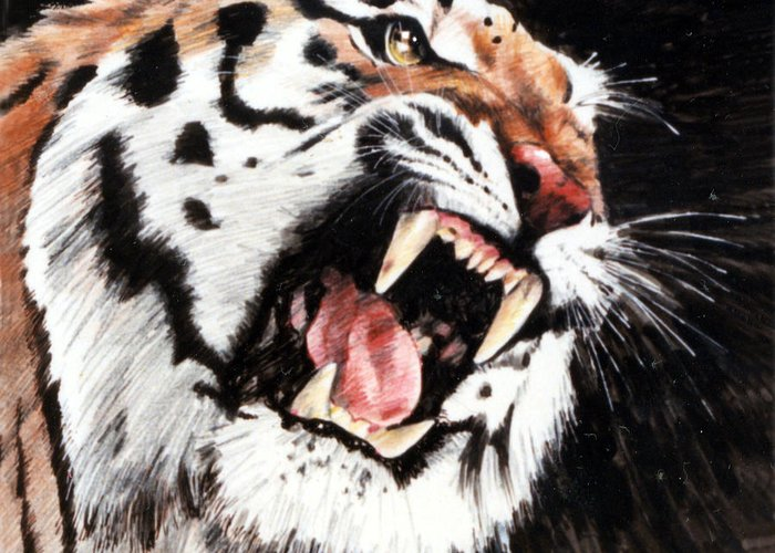 Tiger Roaring Greeting Card featuring the painting Tiger by John Lautermilch