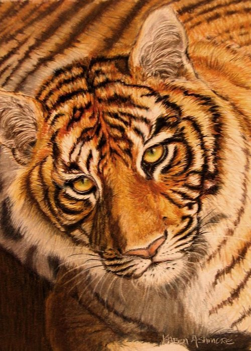 Tiger Greeting Card featuring the drawing Tiger by Karen Ilari