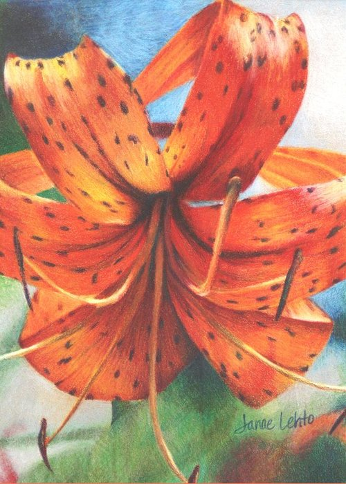 Flower Greeting Card featuring the painting Tiger Lily by Janae Lehto