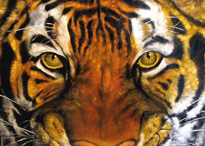 Tiger Greeting Card featuring the painting Tiger Mask Original Oil Painting by Natalja Picugina