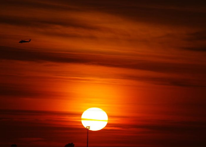 Sunset Greeting Card featuring the photograph Tiger Sunset by Don Prioleau
