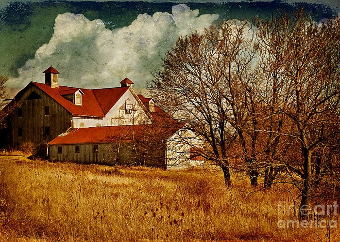 Barns Greeting Card featuring the photograph Tired by Lois Bryan