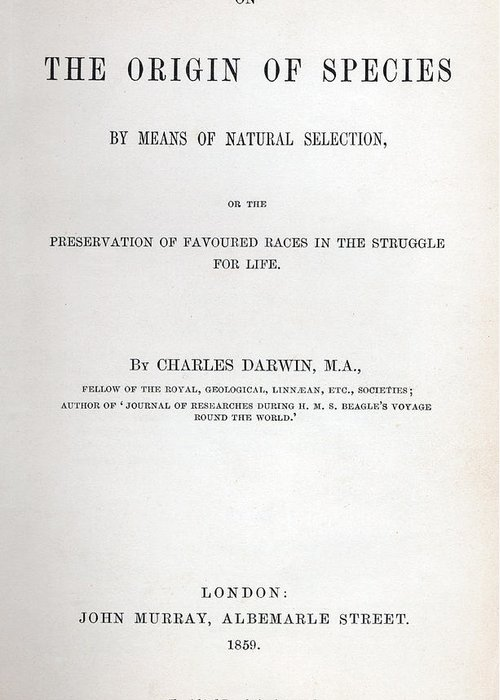 Titlepage Greeting Cards