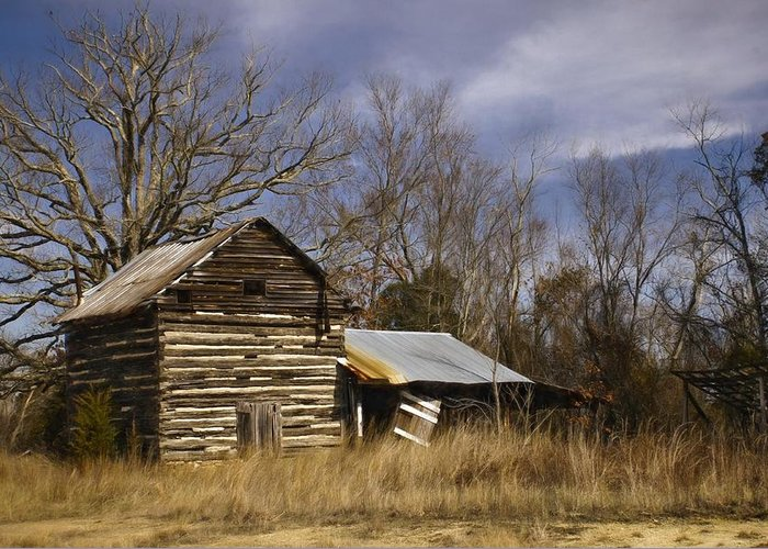 Tobacco Greeting Card featuring the photograph Tobacco Road by Benanne Stiens