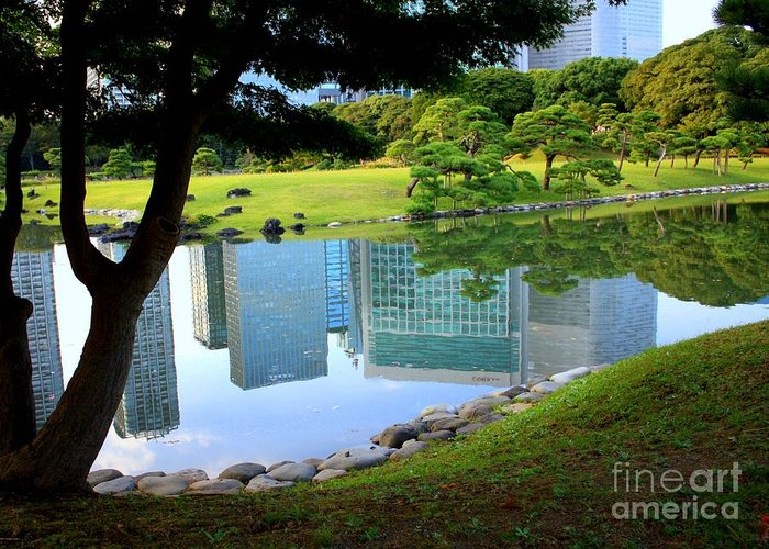 Buildings Reflecting In Water Greeting Cards