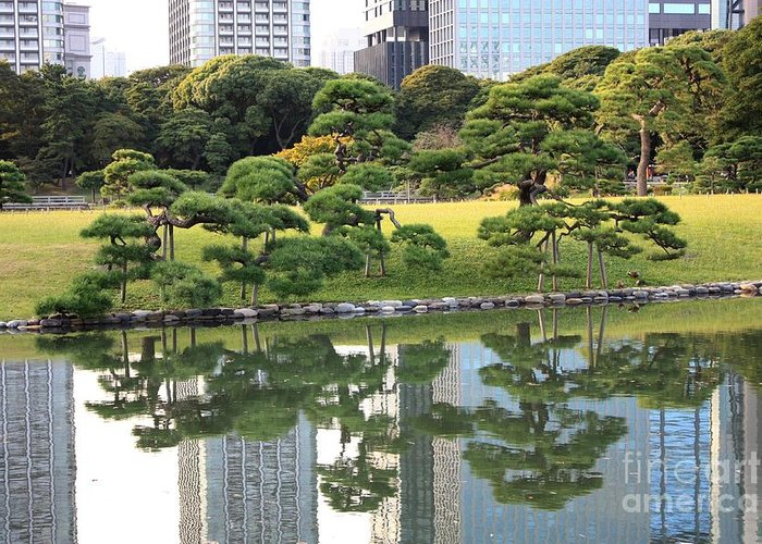 Japan Greeting Card featuring the photograph Tokyo Trees Reflection by Carol Groenen