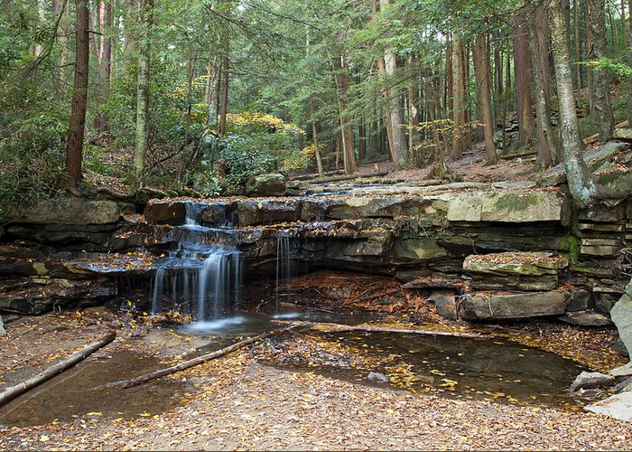 Swallow Falls State Park Greeting Cards