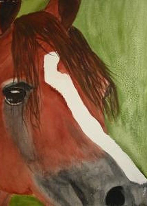 Horses Arabian Head Greeting Card featuring the painting Tommy by Michele Turney