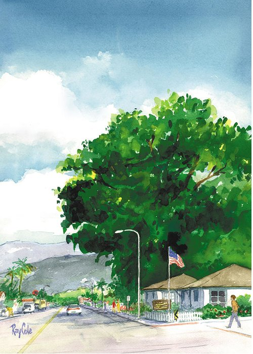Historic Landmark Greeting Card featuring the painting Torrey Pine by Ray Cole
