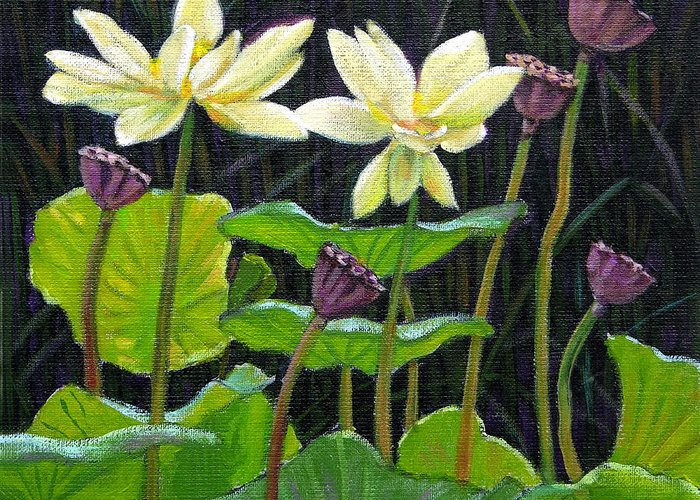 Lotus Greeting Card featuring the painting Touching Lotus Blooms by John Lautermilch