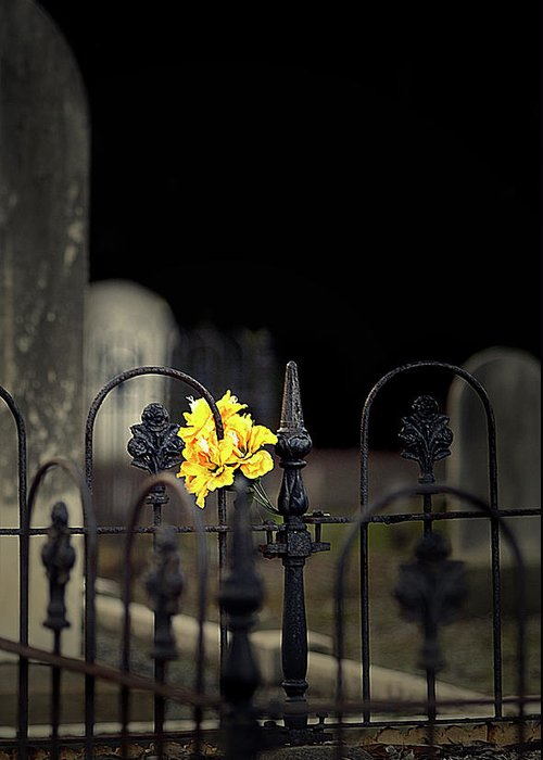 Cemetery Greeting Card featuring the photograph Toujours Souvenu by Marion Cullen