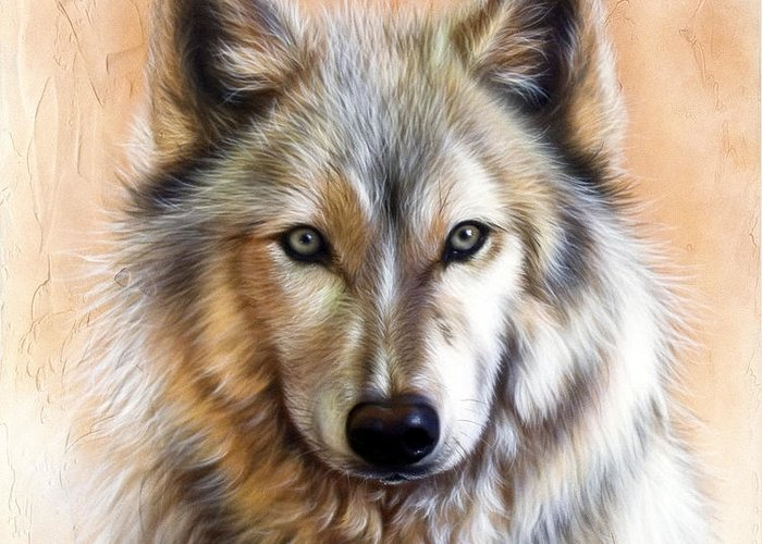 Wolves Greeting Card featuring the painting Trace Two by Sandi Baker