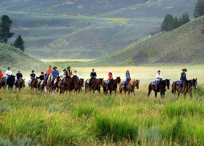 Trail Ride Greeting Card featuring the photograph Trail Ride by Marty Koch