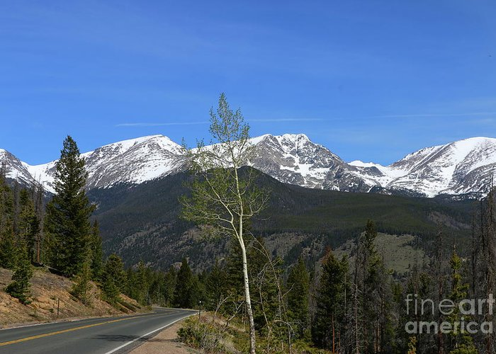 Park Greeting Card featuring the photograph Trail Ridge Road May 2017 by Christiane Schulze Art And Photography