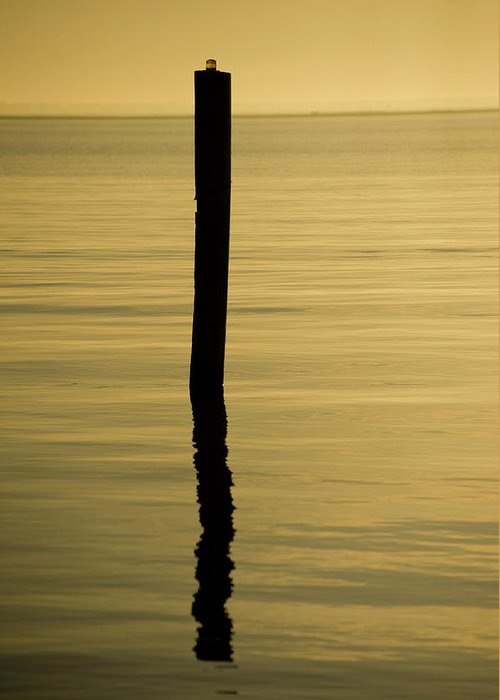 Lanscape Greeting Card featuring the photograph Tranquil Reflections by Tom Rickborn
